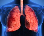 lungs_1280